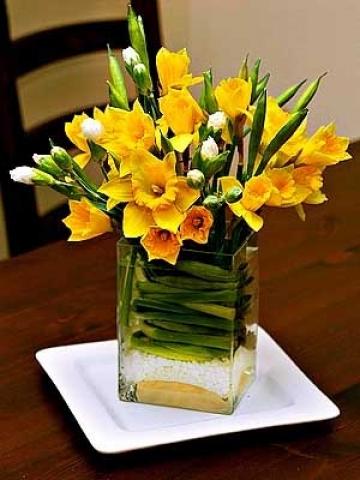 Цветы живые как кувшины купить цветы в горшках в москве дешево со склада